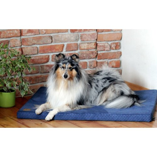 Dog mat HUGO orthopedic - Edition Doggyfit by LaurenDesign, Colour Blauer Structural fabric