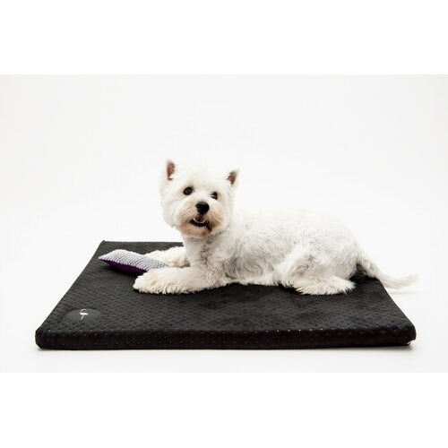 Dog mat HUGO orthopedic - Edition Doggyfit by LaurenDesign, Colour Schwarzer Structural fabric
