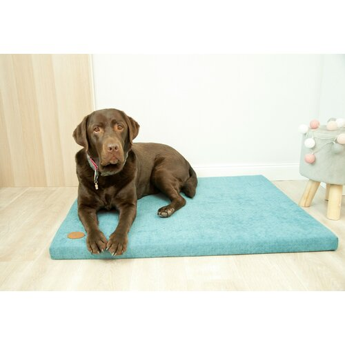 Dog mat HUGO orthopedic - Edition Doggyfit by LaurenDesign, Colour Türkiser Structural fabric